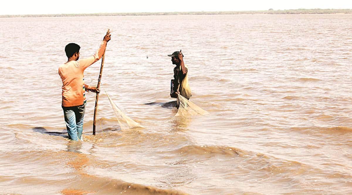 Gujarat flood, Narmada river, Ahmedabad news, Gujarat news, Indian express news