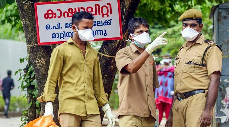 nipah virus, nipah virus in kerala, kerala nipah virus, what is nipah, nipah in ernakulam, ernakulam news, kerala virus, nipah deadly virus, indian express
