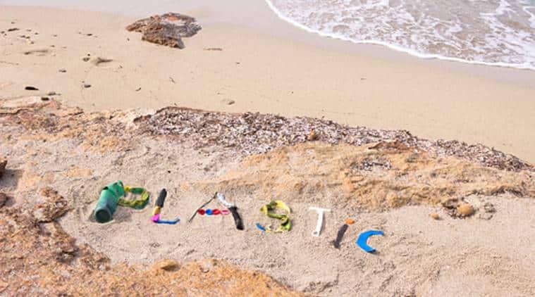plastic, plastic consumption, effects of plastic consumption, ingesting plastic, indian express, indian express news