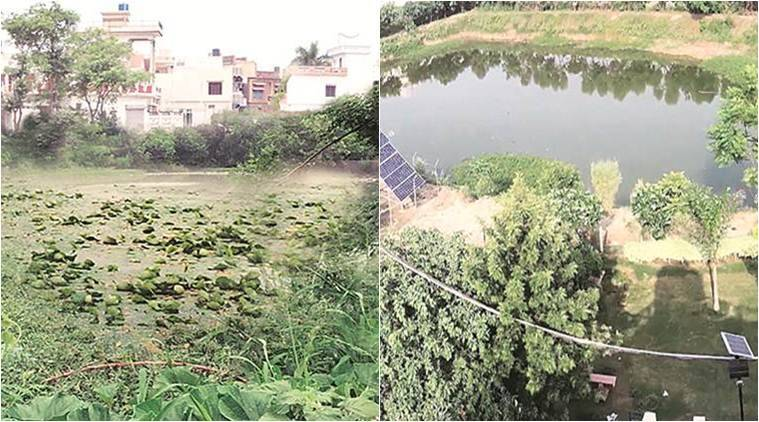 Parched Punjab finds a source of water: rejuvenated village ponds