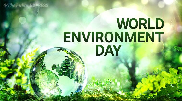 world environment day 2019 activities