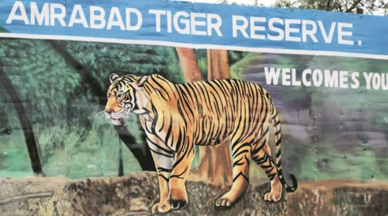 Amrabad Tiger Reserve, Amrabad Tiger Reserve drilling, telangana Amrabad Tiger Reserve drilling, Telangana forest officer protests drilling, india news,