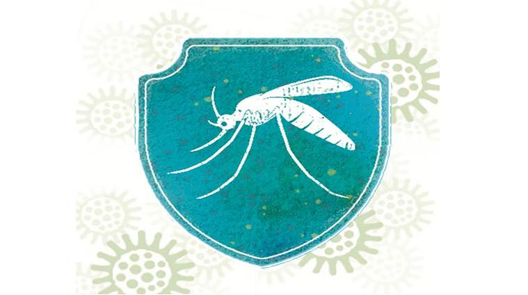 In battle against spread of chikungunya and dengue, ICMR finds unlikely ally — bacteria