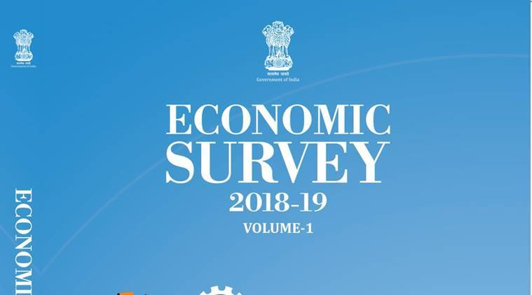 Here's why the Economic Survey's cover is blue
