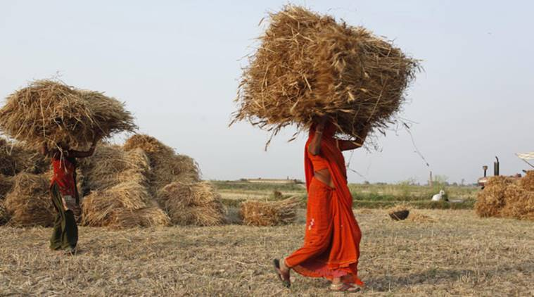 MP farmers getting recovery, seizure notices from banks: BJP