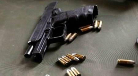 Chandigarh: 85 firearms seized in Tricity
