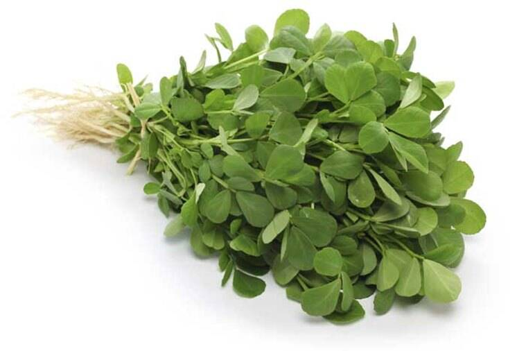 methi, methi leaves, methi seeds, fenugreen, indian express