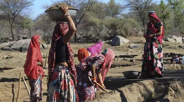 Union Budget 2019: Support for women SHGs, little for other rural sectors