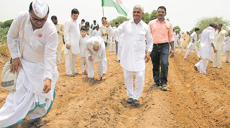 Haryana farmers defy govt restriction, sow banned HT Bt cotton in Hisar