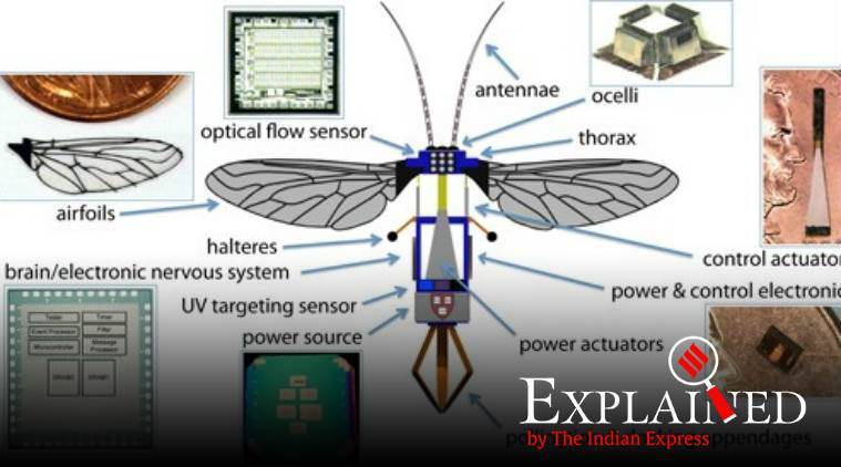 robobee, robobee x wing, fly like robot, flying machine, tiny robot, Harvard Microrobotics Laboratory, indian express