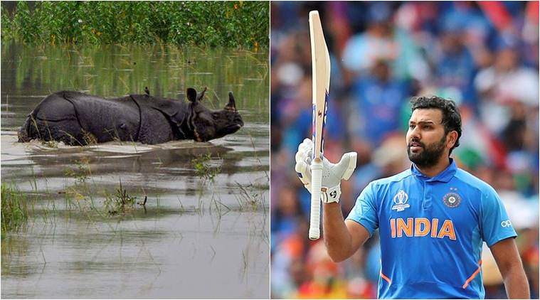 assam floods, assam flood relief, rohit sharma assam floods, r ashwin flood relief, assam flood news, cricket news