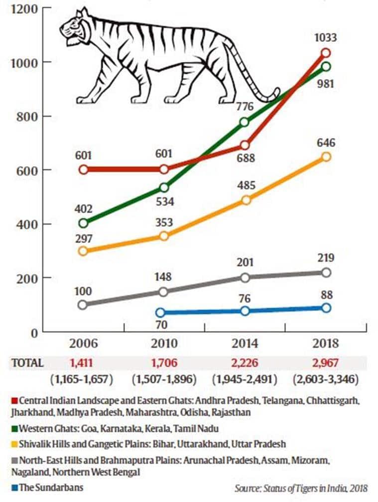 Tiger census in India
