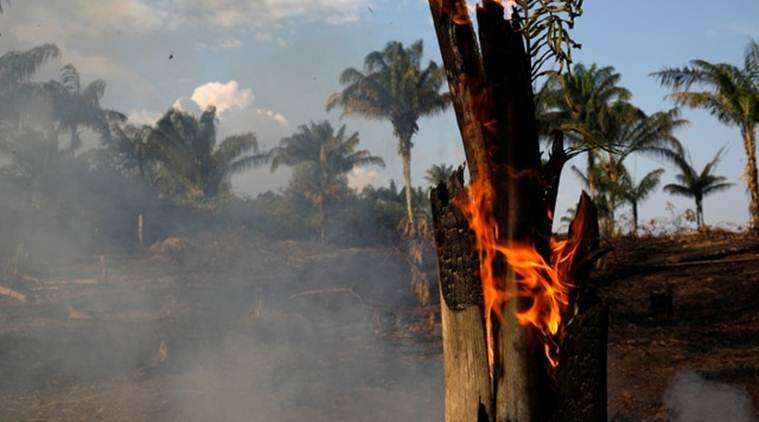 Amazon burning: Brazil reports record forest fires with 72,843 fires detected so far