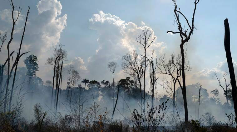 Amazon forest fires led to an increase in air pollution: European Space Agency