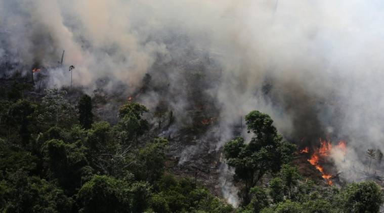Amazon rain forest fire