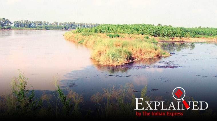 Buddha Nullah, Punjab floods, Punjab rains, Punjab news, Sutlej river, Express Explained