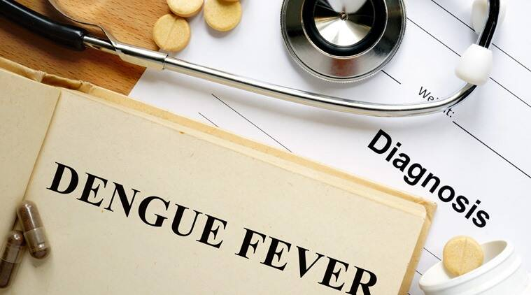 dengue, dengue fever, dengue fever food, indian express, indian express news