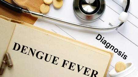 Dengue, Dengue cases in pune, dengue deaths in pune, pune city news