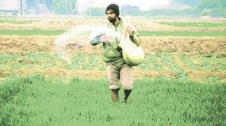 Monsoon recovery spurs nutrient sales