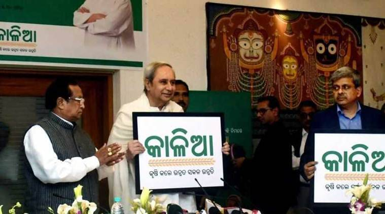 2.66 lakh beneficiaries of farmer assistance scheme KALIA found ineligible: Odisha minister