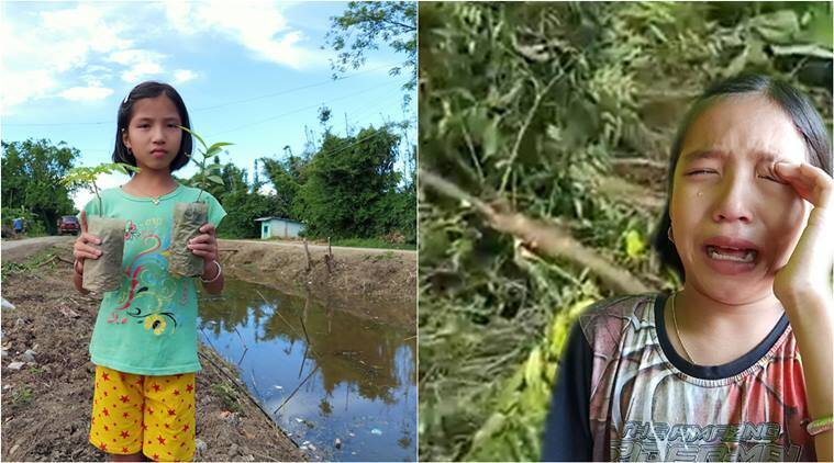 girl cries after trees cut down, manipuri girl cries felling of trees, girl cried over fallen trees green ambassador, manipur green ambassador, n biren singh, manipur green mission, viral news, good news, indian express