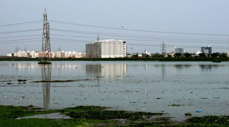 Chennai's Pallikaranai marshland reduced due to encroachment by govt agencies, IT companies, finds report
