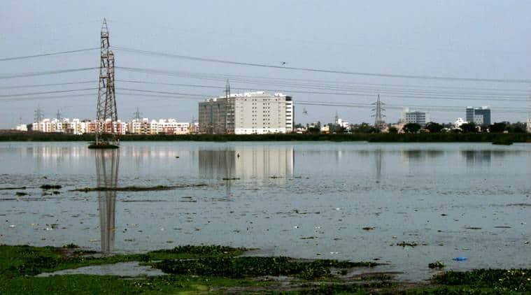 50 To 3 Sq Km In 30 Years Chennai S Pallikaranai Marsh