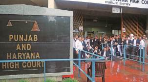 HC strikes down Punjab procedure allowing DMs to evict kin on complaint of the elderly