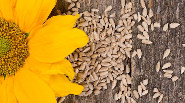 Sunflower seeds: Why you need to add this superfood to your meals