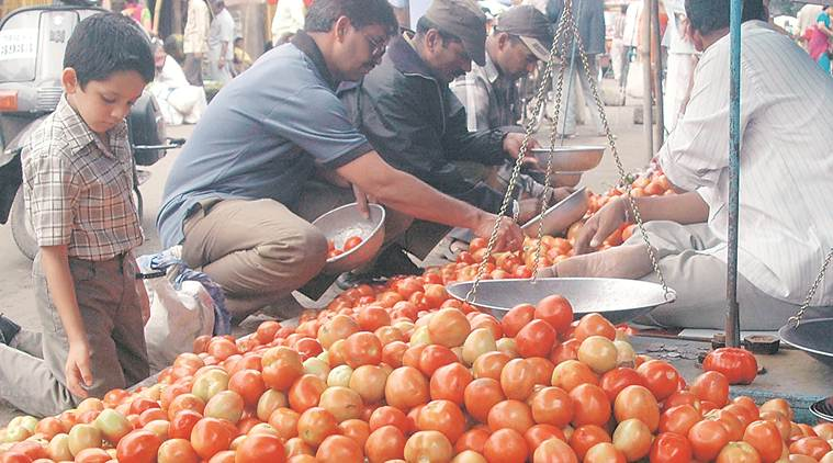 Tomato prices may rise due to low supply, suspension of Pak trade unlikely to affect growers