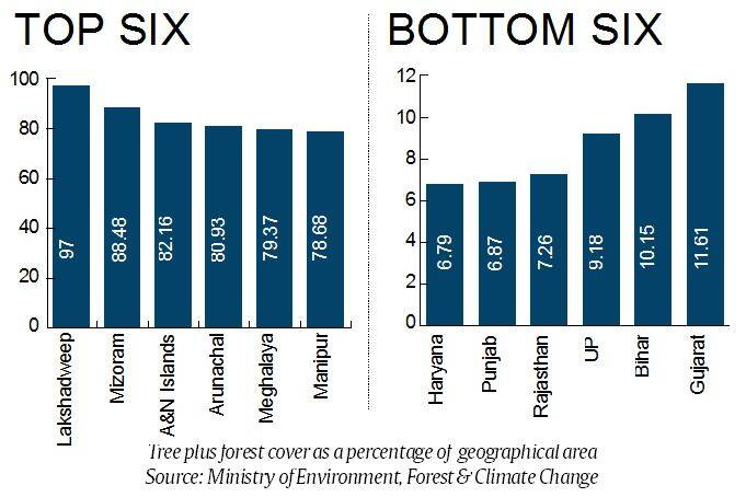 forests in india, India State of Forest Report, india forests cover, india forests percentage, ISFR report, Environment Ministry, indian express