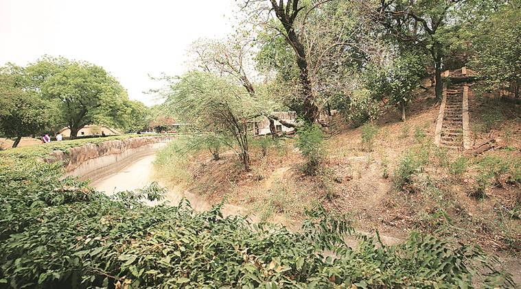 Transfer of Delhi zoo to central authority under discussion: Supriyo
