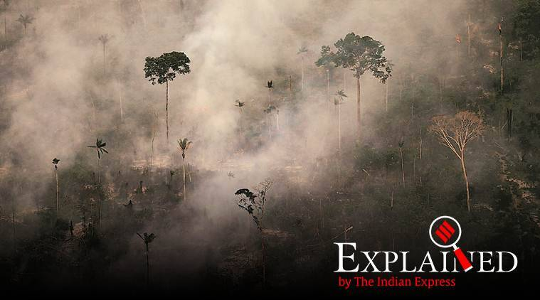 amazon fire, wildfire, forest fire, express explained