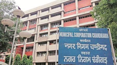 Now cash-strapped MC to spend Rs 1.42 cr on shrubs and plants