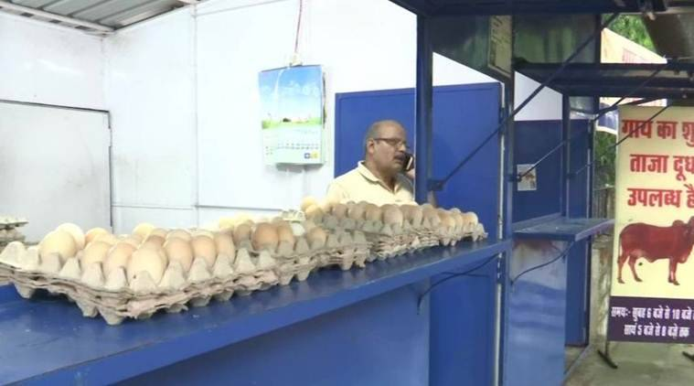 Madhya Pradesh: Selling chicken, milk from same parlour will hurt 'religious sentiments', says BJP lawmaker