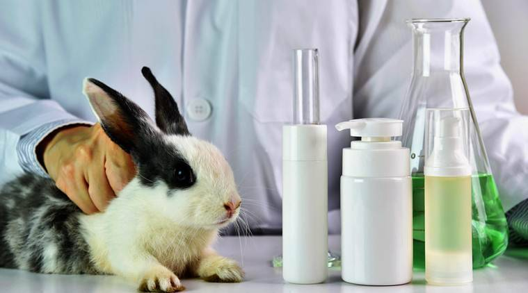 What is cruelty free cosmetic products, cruelty free makeup