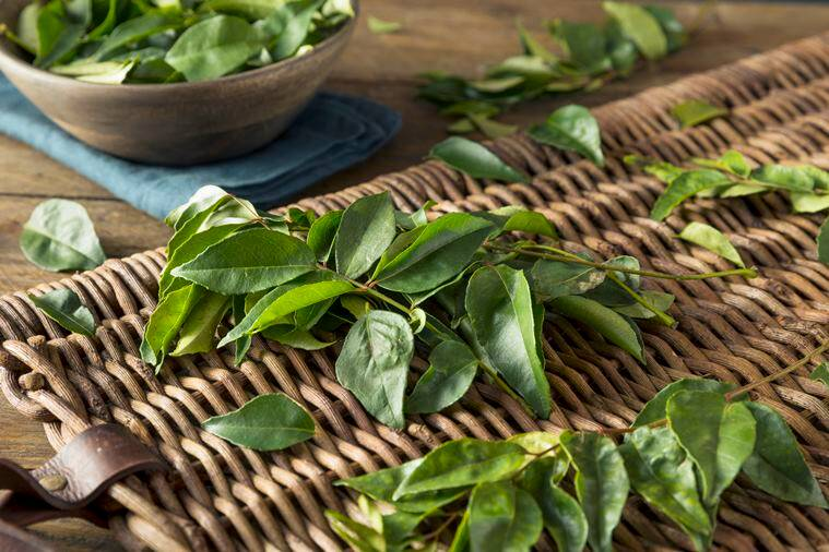 face mask, curry leaves face mask, skincare tips, skincare indian express