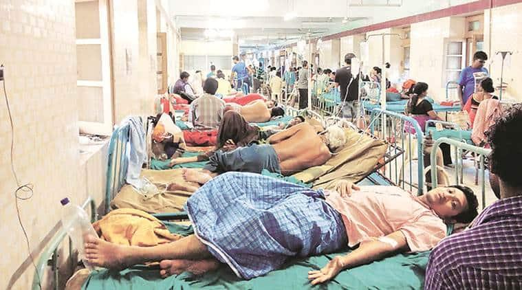 Kolkata news, Kolkata city news, Kolkata dengue cases, Kolkata municipal corporation ,indian express