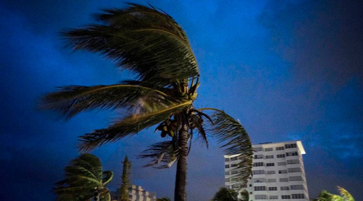 miami news, palm tree helps toddler survive 4-story fall, miami toddler, world news, indian express