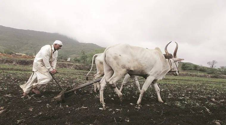 pm kisan scheme, Pradhan Mantri Kisan Samman Nidhi, YSR Rythu Bharosa, kalia scheme, farmer benefit schemes in india