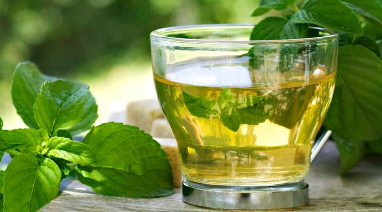 green tea, benefits of green tea, indian express, indian express news