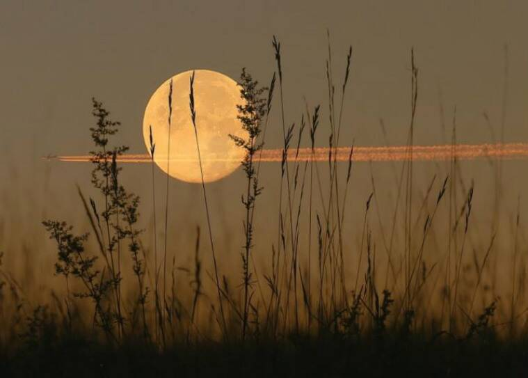 A rare glowing 'harvest moon' will light up the sky tonight