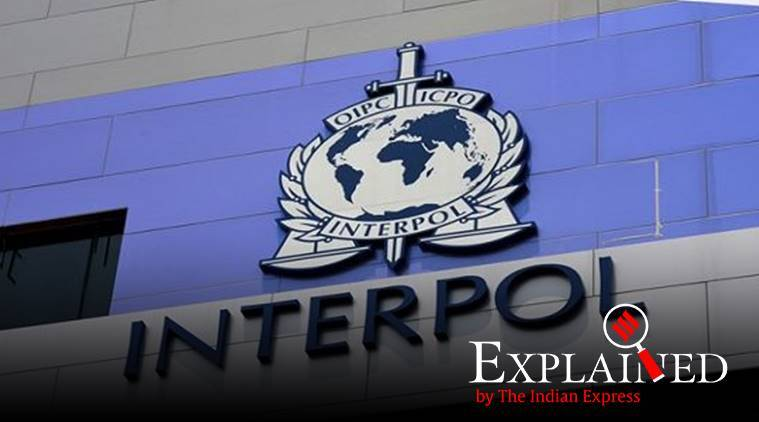 Explained: What is an Interpol Red Notice, what does it do?
