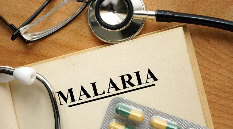lancet study, lancet global health study, malaria deaths, tb deaths, india news, indian express