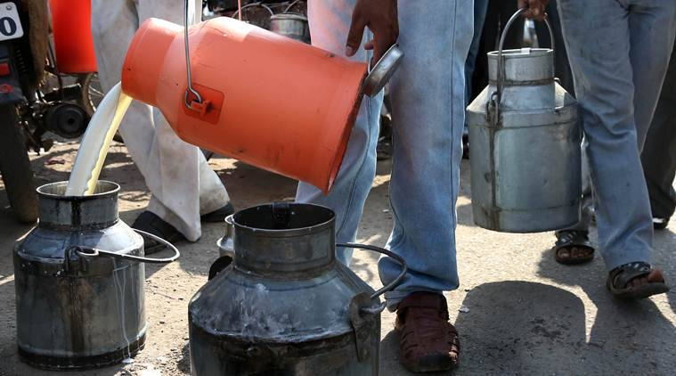 At Rs 140 per litre, milk was costlier than petrol in ...