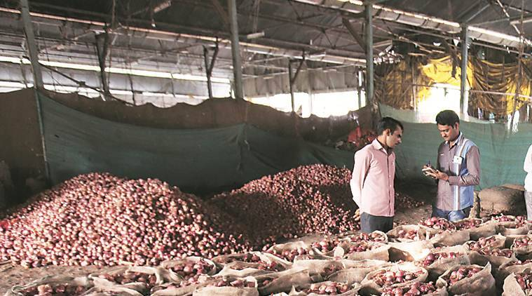 onion prices, onion prices in punjab, onion sale in punjab, punjab onion farmers, chandigarh city news