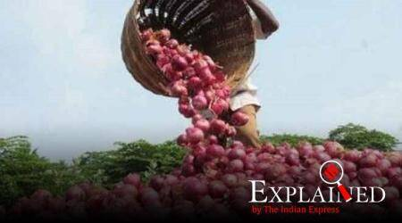Onion prices, onion at fair price shops in odisha, onion prices going up, why are onion prices going up, Maharashtra onion crop, indian express, indian express explained