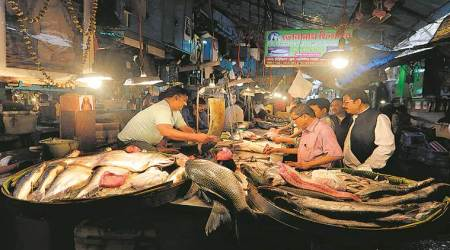 fish, love for fish, bengali households, eye 2019, sunday eye, indian express, indian express news