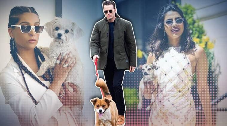 pet parent, pet, famous pets, celebrity pets, Indian Express, Indian Express news