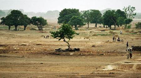 Desertification, desertification of africa, Sahel, Sahel in Africa, green jobs, United Nations Convention for Combating Desertification, UNCCD